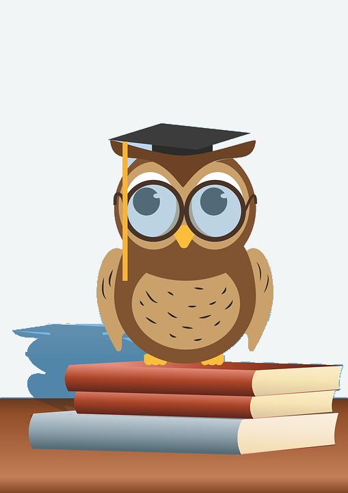 read-owl-1376297_960_720