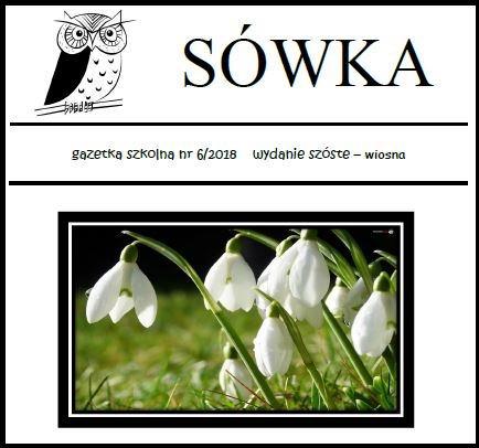sowka6